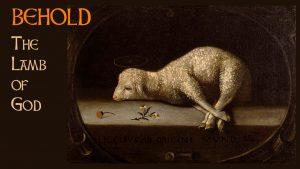 Image : Lamb